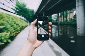 pexels-photo-861096.jpeg