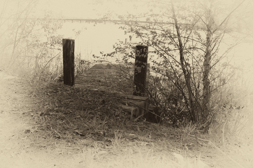The dock in sepia