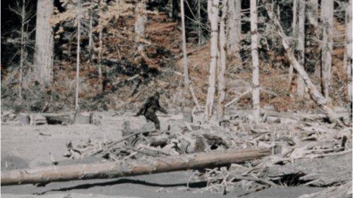 bigfoot-roger-patterson-1_h